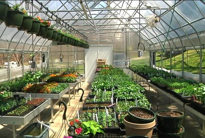 Lanesboro high school students prep greenhouse for end-of-year sale